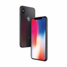 Apple iPhone X 256GB Abu-Abu