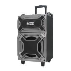 AuBern Portable Audio PA System GX100