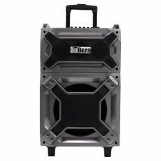 Aubern Professional Portable Audio System GX-100 (Portable Speaker Aubern GX-100)