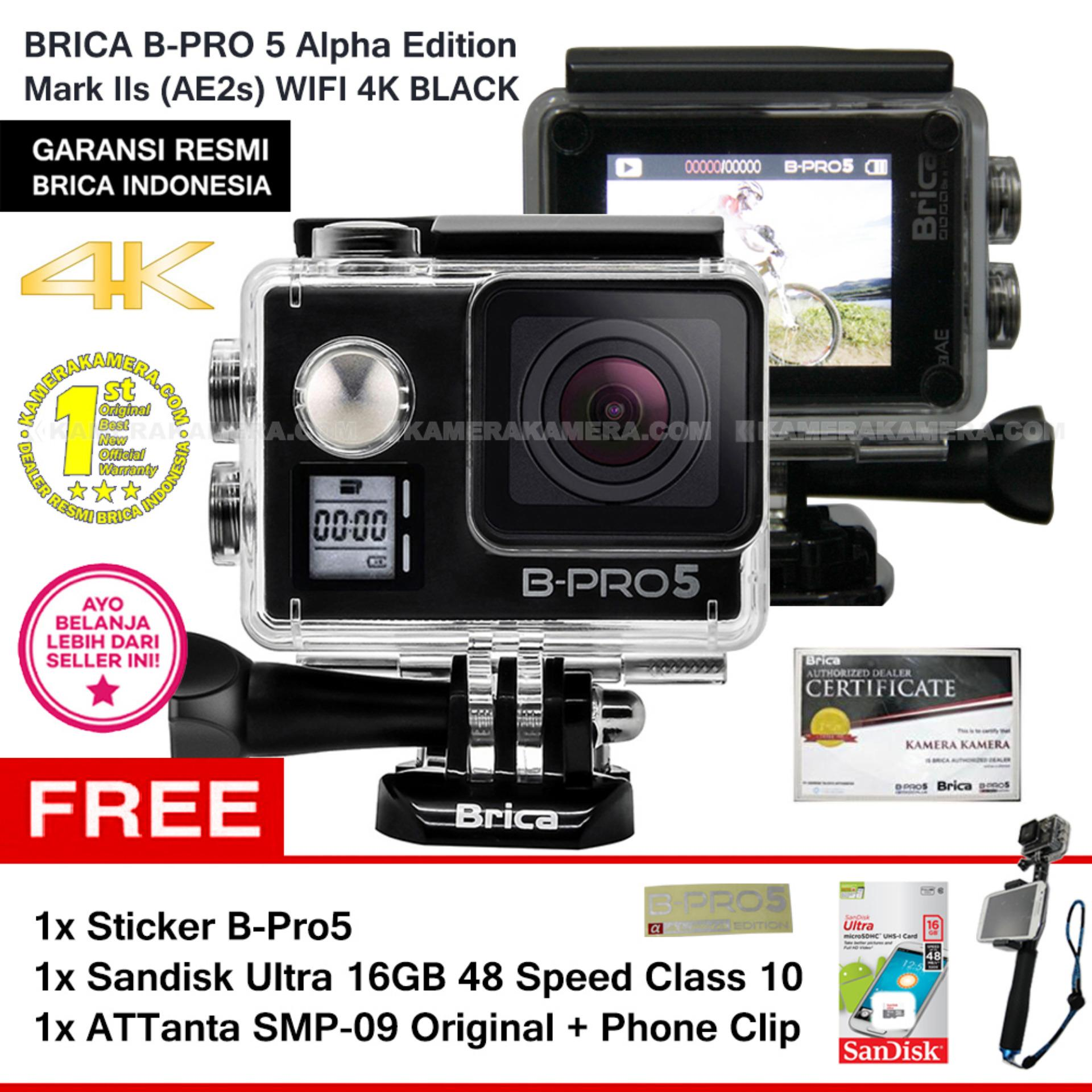 BRICA B Pro5 Alpha Edition 4K Mark IIs AE2s BLACK Sticker B
