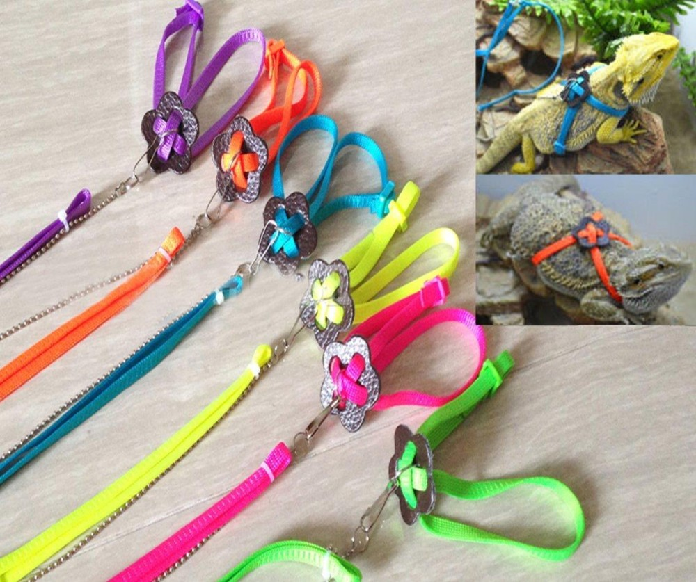 Generik Adjustable Kadal Reptil Harness Tali Adjustable Multicolor Lampu Lembut Fashion (hijau) By Star Mall.