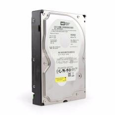 Harddisk Western Digital / Hitachi 320GB for PC / DVR CCTV Garansi 1 Tahun