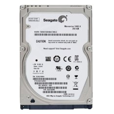 HDD Seagate 250GB For PC