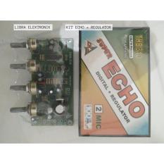Kit Echo Digital Plus Regulator 2 Mic CKJ
