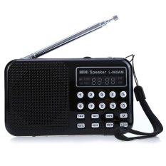 L 065 Portable Am Fm Radio Music Speaker With Usb Aux Audio Playing Tf Sd Card Slot Intl Indonesia