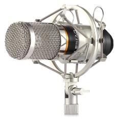 Spesifikasi Leihao Kondensor Mikrofon Rekaman Suara Dan Metal Shock Mount Untuk Radio Perekaman Suara Intl Yang Bagus Dan Murah