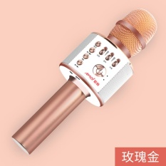 Toko Mobile Ponsel Bernyanyi Treasure Palm Ktv Bernyanyi Mikrofon Radio Artifact Wireless Bluetooth Mikrofon Intl Terdekat