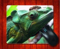 Beli Mousepad Iguana27 Hewan Untuk Mouse Mat 240 200 3Mm Gaming Mice Pad Intl Kredit