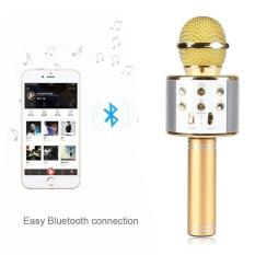Beli Mic Karaoke Portable Ws 858 Bluetooth Wireless Microphone Speaker Usb Seken