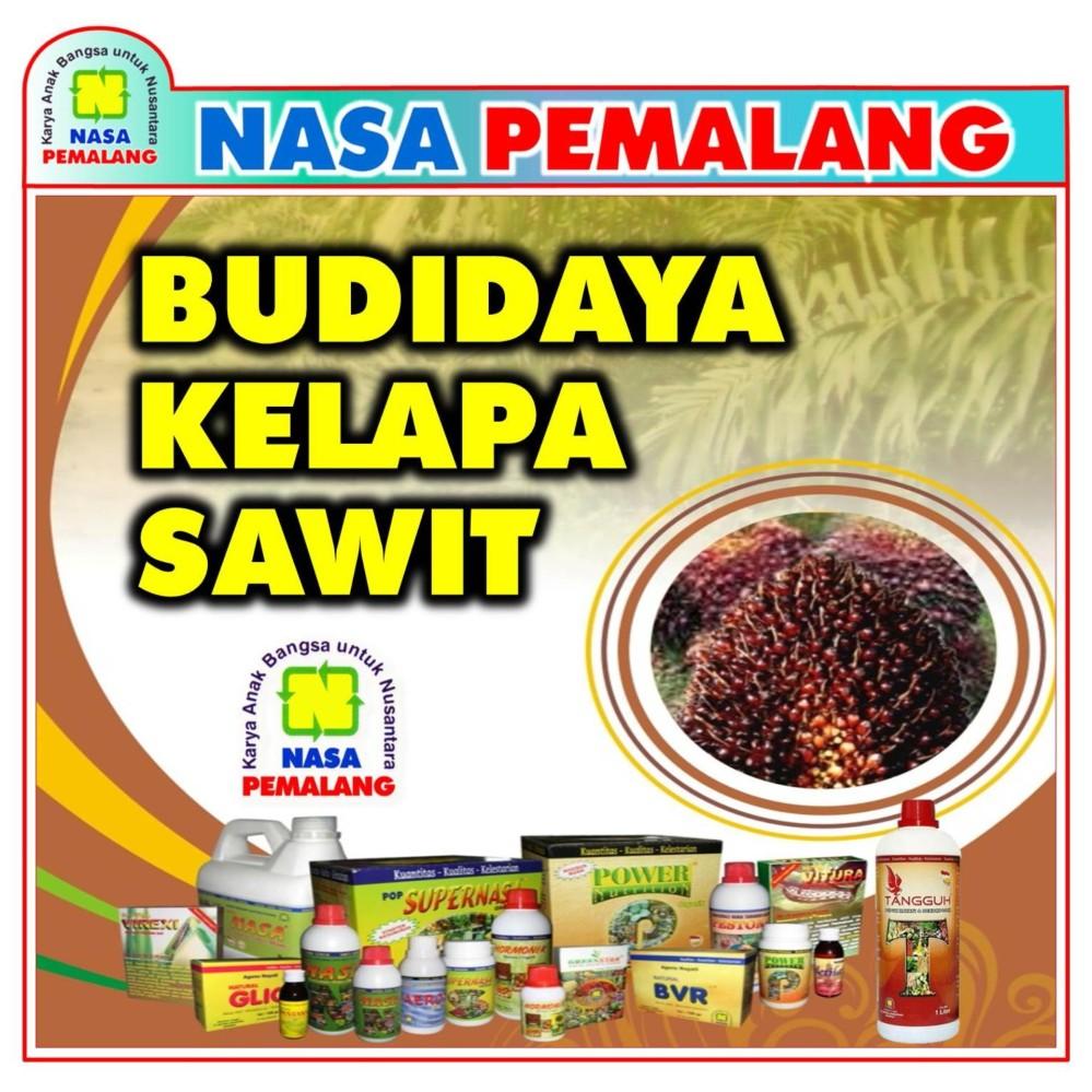 Paket Pupuk Budidaya Kelapa Sawit Untuk Luas 1000 M2 ( (Supernasa + Power Nutrition + Pocnasa + Hormonik)