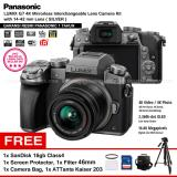 Cara Beli Panasonic Dmc G7K Silver Kamera Mirrorless G7 Wifi 4K 16Mp Lumix G Vario 14 42Mm F3 5 5 6 Ii Asph Garansi Resmi Screen Protector Sandisk 16Gb Filter 46Mm Camera Bag Attanta Kaiser 203