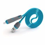 Toko Pn 301 2In1 Kecepatan Dan Data Pengisian Kabel Biru Intl Online Di Tiongkok
