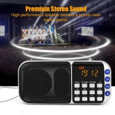 Portable FM Radio HiFi Stereo Speaker Music Player Support Micro SD TF Card USB Disk AUX (Blue) - intl
