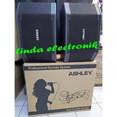 Professional System Speaker Aktif Karaoke Ashley K 2310 (10 Inch)