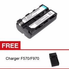 Rajawali Third Party Battery for Sony F550/F570 + Free Charger (LED Powerpack)