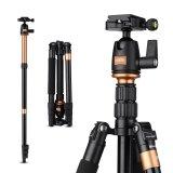 Rangers 55 5 Ringan Pro Kamera Camcorder Tripod Untuk Canon Dslr Ra065 Intl Rangers Diskon 40