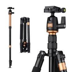 Review Toko Rangers 55 5 Ringan Pro Kamera Camcorder Tripod Untuk Canon Dslr Ra065 Intl Online