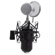 Spesifikasi Simple For Home Recording Mic Condensor Bm 8000 Baru