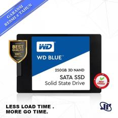 Western Digital WD Blue 3D Nand SSD 250GB 2.5