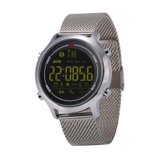 Review Zeblaze Vibe Ip67 Tahan Air Bluetooth Smart Sport Watch Mendukung Langkah Menghitung Calory Panggilan Mengingatkan Informasi Pengingat Remote Capture Stopwatch Alarm Silver Intl Oem
