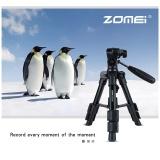 Beli Zomei Q100 Portable Aluminium Tripod Kompak Desktop Macro Mini Tabletop Bracket Dengan Kepala Untuk Sony Canon Nikon Dslr Kamera Ponsel Intl Murah