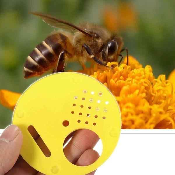 Tool for 12x Plastic Beekeepers Bee Hive Nuc Box Entrance Gate Beekeeping Yellow
