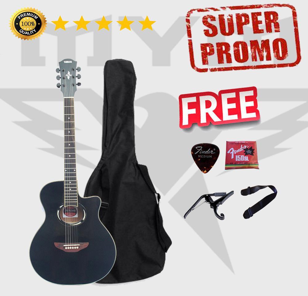 Gitar Akustik Apx 500ll Custom
