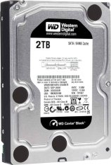 Western Digital Caviar BLack 3,5