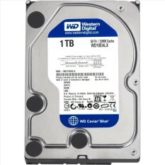 Western Digital Caviar Blue 3,5