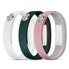 Beli Sony Smartband Wrist Straps Fashion Swr110 Tali Pengganti Smartband Large Pakai Kartu Kredit