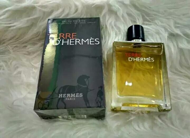Terre D Hermes Parfume Pria 100ml