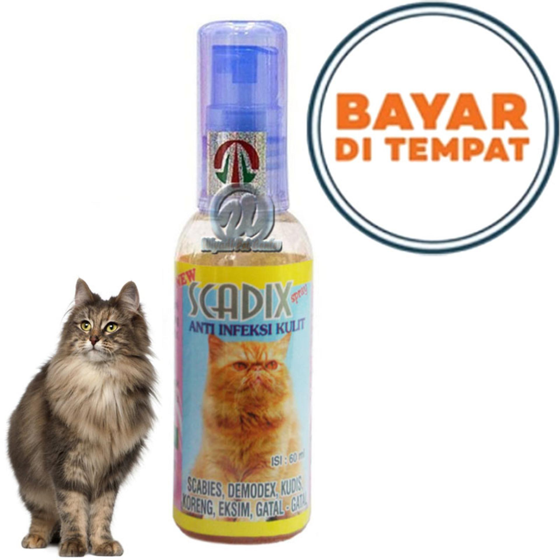 Obat Jamur Scabies Kucing Scadix By Lucky Petshop.