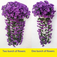 1 Sekumpulan Usahatani Bracketplant Violet Karangan Bunga Menggantung Bunga Merambat Traling