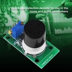 Review 1 Pcs Mq131 Ozon Sensor O3 Konsentrasi Ozon Gas Deteksi Modul Oem Di Tiongkok