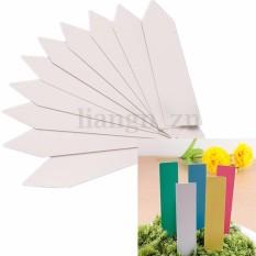 100 Pcs Dapat Digunakan Kembali Plastik Pot Tanaman Benih Label Marker Nursery Taman Stake Label-Internasional