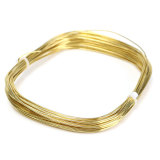 Jual Beli 10 M X 1Mm Setengah Keras Kuningan Bulat Kawat For Diy Kerajinan Manik Manik Perhiasan Membuat Emas Intl Indonesia