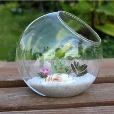 Cara Beli 15 Cm Kaca Bening Vas Terarium Wadah Pot Home Pernikahan Garden Dekorasi Intl