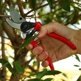 Spesifikasi 1 Pc Pemangkasan Gunting Taman Pruners And Cutter Bunga Ergonomis Graft Intl Online