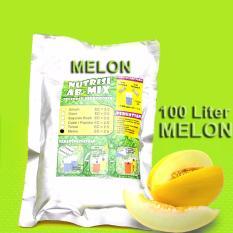 2 pcs Nutrisi ABMix Hidroponik padat 500ml Melon AB Mix, jual nutrisi untuk hidroponik, nutrisi hidroponik
