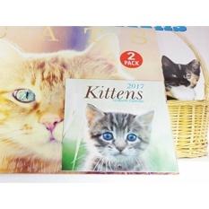 2017 Kucing Kucing 12 Bulan Kalender Dinding-Mini Kittens Kalender Bundel Coon Shorthair Siam Biru Siberia Lebih-Internasional