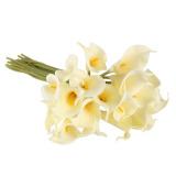Beli 20 Buah Calla Pengantin Pernikahan Karangan Bunga Getah Perasaan Nyata Bunga Putih Susu Yang Bagus