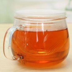 Jual 320 Ml Kaca Bening Tahan Panas Teh Mug Coffee Cup Dengan Saringan Teh Infuser Lid Intl Hong Kong Sar Tiongkok