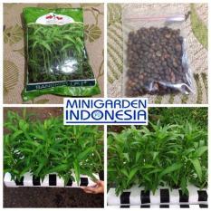 500 Benih Kangkung Bangkok LP-1 repack bibit tanaman sayur sayuran hidroponik