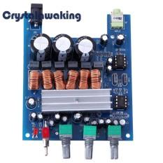 Jual 50Wx2 100 W Tpa3116 D2 2 1 Hifi Digital Subwoofer Amplifier Verst Board Intl Antik