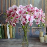 Review 5Pcs Artificial Fake Silk Flower Phalaenopsis Butterfly Orchid Home Wedding Decor Intl Tiongkok
