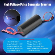80Kv High Voltage Pulse Generator Inverter Super Arc Pulse Ignition Module 6 12V Intl Murah