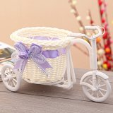 Beli Amart Elegant Bicycle Vases Household Decoration Gift Murah Di Tiongkok