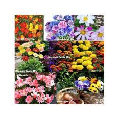 Amefurashi Paket hemat Benih / Bibit Bunga Cosmos, Marigold Dan Zinnia