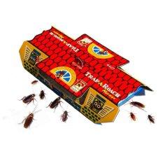 ARS Pembunuh / Pembasmi Kecoa