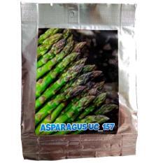 Asparagus UC 157 seed - benih asparagus hijau-25 gram